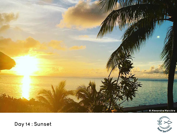 WWW_Day_13_Sunset