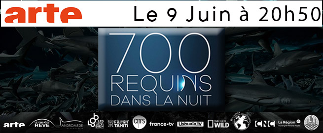 700Requins_ARTE_May2018
